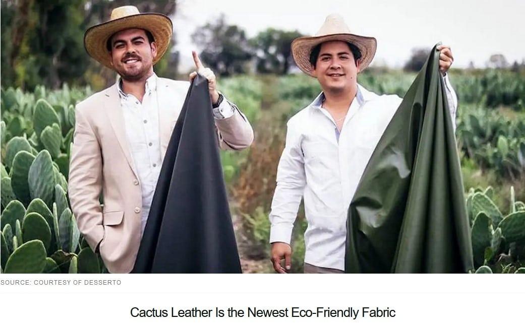 Cactus Leather
